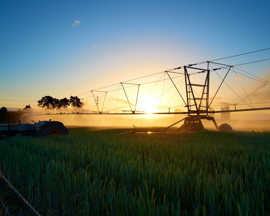 Ngành nông nghiệp tại New Zealand