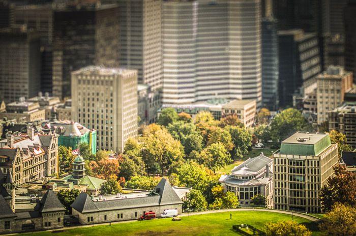 Đại học McGill - Một trong những đại học top đầu tỉnh bang Québec 2022