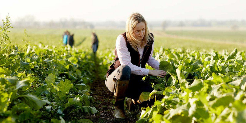 Ngành Khoa học nông nghiệp và lâm nghiệp thuộc nhóm các ngành hot trong tương lai